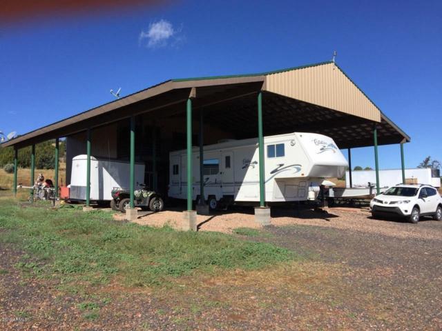 3 Acr 3556, Vernon, AZ 85940 (MLS #5871454) :: The Daniel Montez Real Estate Group