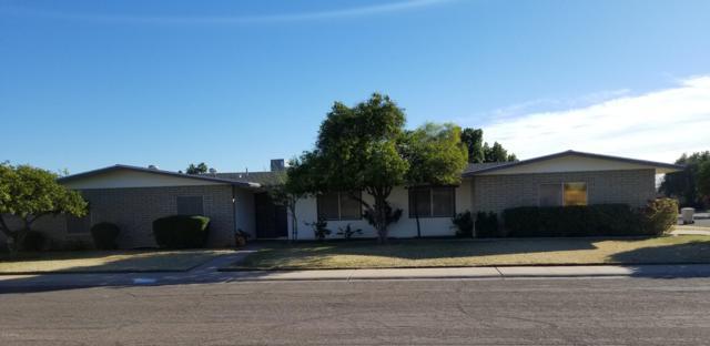 8231 N 43RD Drive, Glendale, AZ 85302 (MLS #5871593) :: CC & Co. Real Estate Team