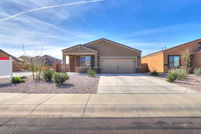 38113 W La Paz Street, Maricopa, AZ 85138 (MLS #5872133) :: Keller Williams Realty Phoenix