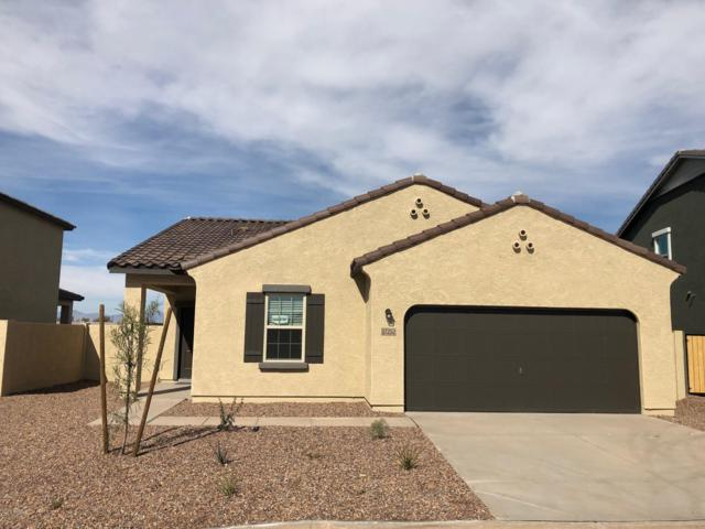 37252 W Cannataro Lane, Maricopa, AZ 85138 (MLS #5872730) :: The Laughton Team