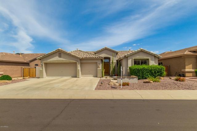 7144 W Bronco Trail, Peoria, AZ 85383 (MLS #5873009) :: Yost Realty Group at RE/MAX Casa Grande