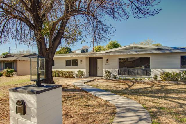 8444 N 16TH Avenue, Phoenix, AZ 85021 (MLS #5873427) :: The Property Partners at eXp Realty