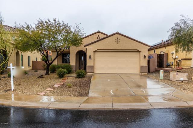 7188 W Milton Drive, Peoria, AZ 85383 (MLS #5873592) :: Yost Realty Group at RE/MAX Casa Grande