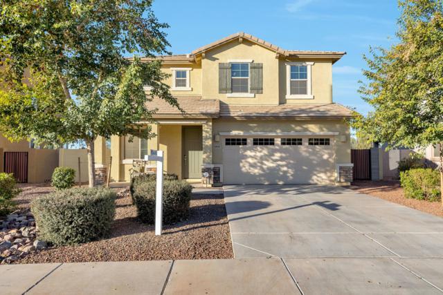 4890 S Twinleaf Drive, Gilbert, AZ 85298 (MLS #5873684) :: Yost Realty Group at RE/MAX Casa Grande