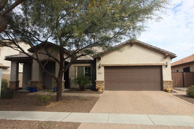 3132 E Chisum Lane, Gilbert, AZ 85297 (MLS #5873822) :: Revelation Real Estate