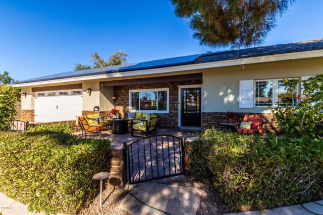 3628 E Hazelwood Street, Phoenix, AZ 85018 (MLS #5874277) :: Yost Realty Group at RE/MAX Casa Grande