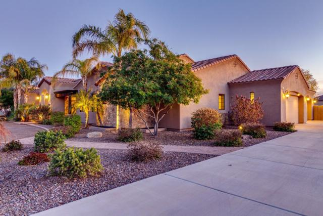 14003 E Cedar Waxwing Drive, Chandler, AZ 85249 (MLS #5874368) :: CC & Co. Real Estate Team