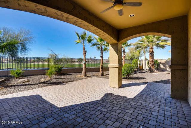 14297 W Harvard Street, Goodyear, AZ 85395 (MLS #5874371) :: CC & Co. Real Estate Team