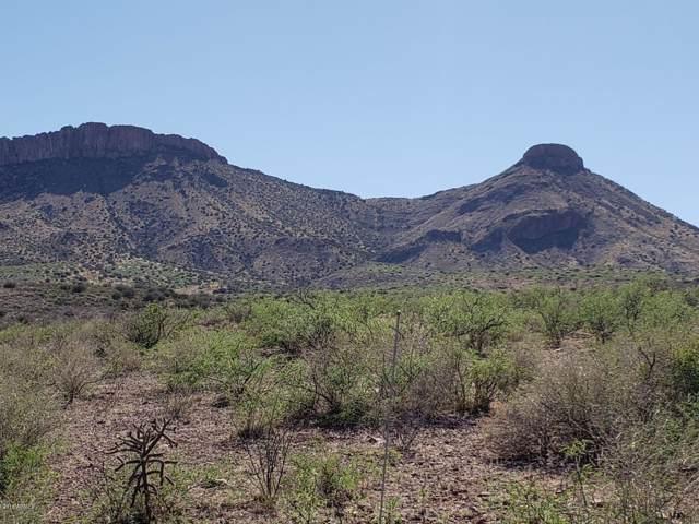 XXXX N Silver Creek Road, Douglas, AZ 85607 (MLS #5874487) :: Brett Tanner Home Selling Team