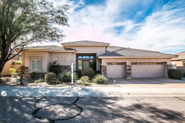 27914 N 115th Place, Scottsdale, AZ 85262 (MLS #5874622) :: Yost Realty Group at RE/MAX Casa Grande