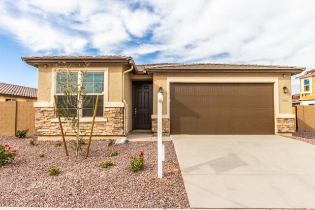 17552 W Desert Bloom Street, Goodyear, AZ 85338 (MLS #5874869) :: The Results Group