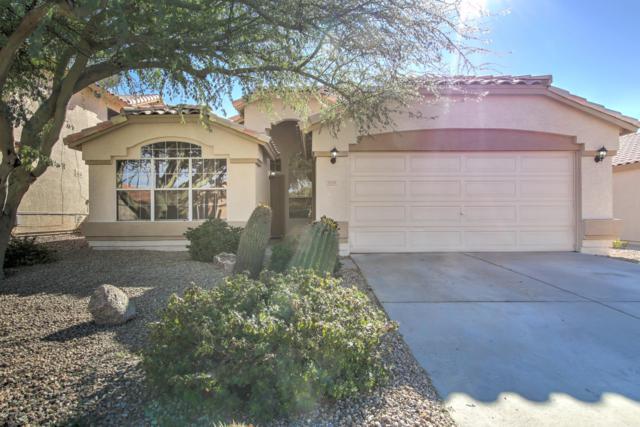 3939 E Encinas Avenue, Gilbert, AZ 85234 (MLS #5874937) :: Revelation Real Estate