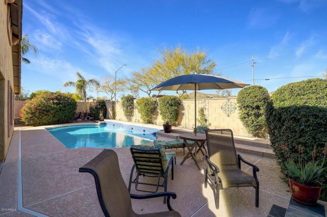 3106 W Donatello Drive, Phoenix, AZ 85086 (MLS #5875046) :: The Jesse Herfel Real Estate Group