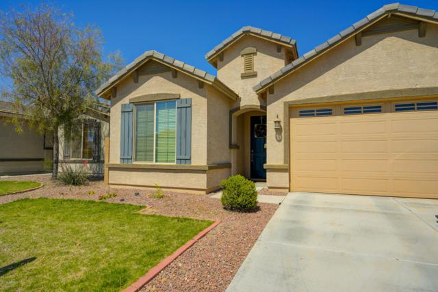 1686 W Desert Spring Way, Queen Creek, AZ 85142 (MLS #5875693) :: Revelation Real Estate