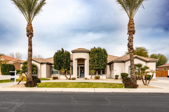 4160 E Aquarius Place, Chandler, AZ 85249 (MLS #5876027) :: CC & Co. Real Estate Team