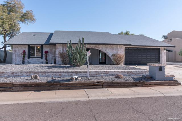 15039 N 19TH Way, Phoenix, AZ 85022 (MLS #5876095) :: Yost Realty Group at RE/MAX Casa Grande