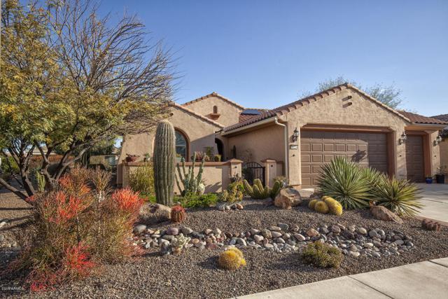 26234 W Horsham Drive, Buckeye, AZ 85396 (MLS #5876549) :: Arizona 1 Real Estate Team