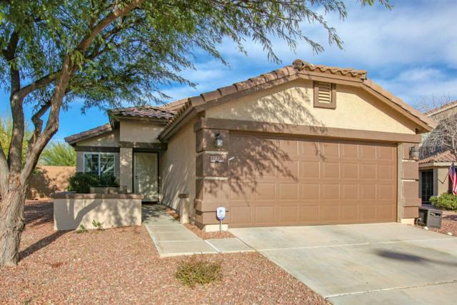 22220 W Antelope Trail, Buckeye, AZ 85326 (MLS #5876566) :: Yost Realty Group at RE/MAX Casa Grande