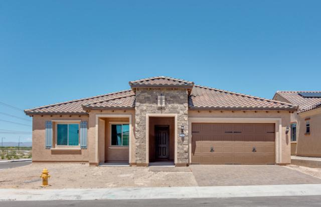 27492 W Burnett Road, Buckeye, AZ 85396 (MLS #5876782) :: The Bill and Cindy Flowers Team