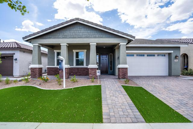 4966 N 207TH Avenue, Buckeye, AZ 85396 (MLS #5877001) :: Yost Realty Group at RE/MAX Casa Grande
