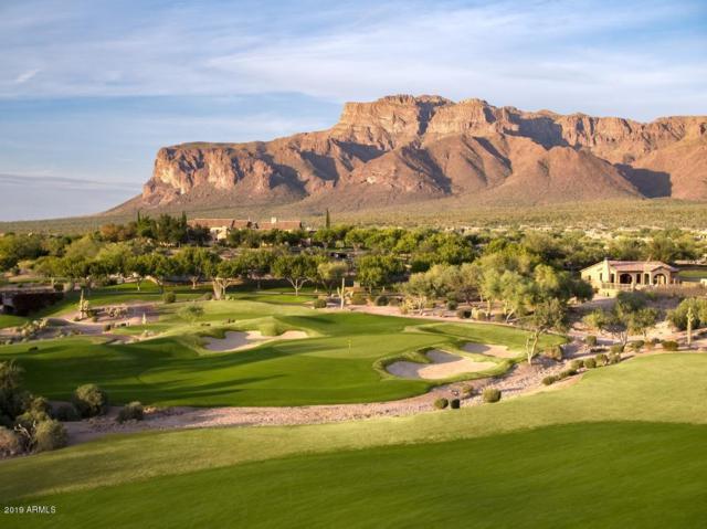 9521 E Thunder Pass Drive, Gold Canyon, AZ 85118 (MLS #5877022) :: The Wehner Group