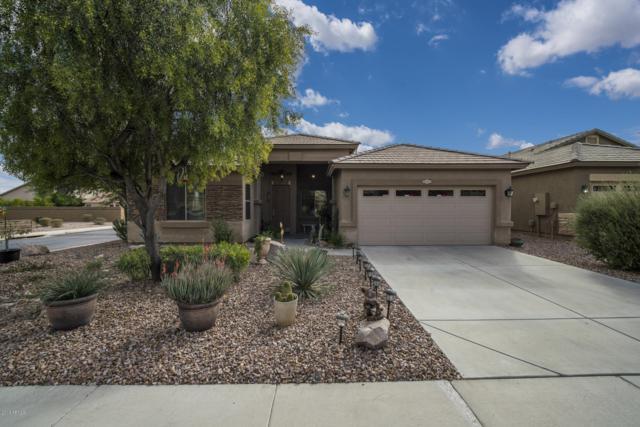 46007 W Rainbow Drive, Maricopa, AZ 85139 (MLS #5877355) :: Yost Realty Group at RE/MAX Casa Grande