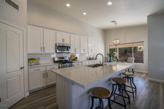 3517 E Kerry Lane, Phoenix, AZ 85050 (MLS #5877400) :: The W Group