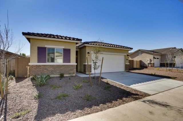 21219 W Palm Lane, Buckeye, AZ 85396 (MLS #5877440) :: The Property Partners at eXp Realty