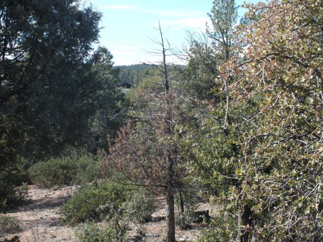 2301 E Scarlet Bugler Circle, Payson, AZ 85541 (MLS #5878068) :: CC & Co. Real Estate Team