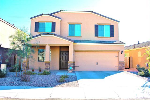 8219 W Pueblo Avenue, Phoenix, AZ 85043 (MLS #5878164) :: CC & Co. Real Estate Team