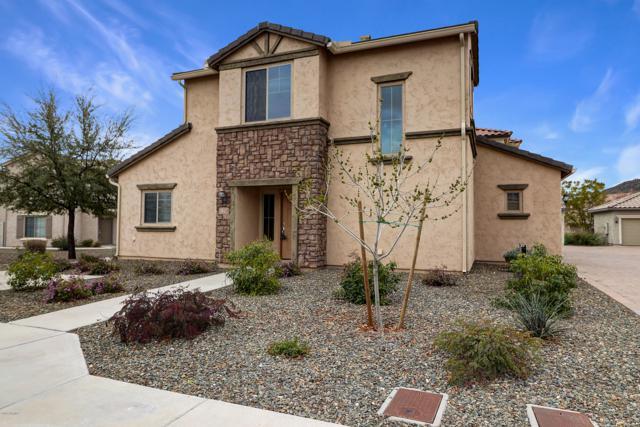5337 W Molly Lane, Phoenix, AZ 85083 (MLS #5878357) :: The W Group