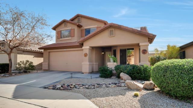 12319 W San Juan Avenue, Litchfield Park, AZ 85340 (MLS #5878369) :: Gilbert Arizona Realty