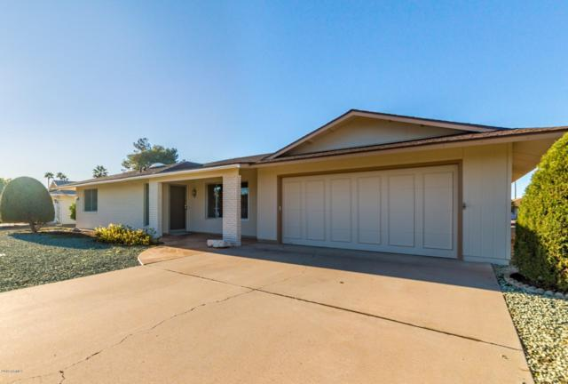10117 W Concho Circle, Sun City, AZ 85373 (MLS #5878812) :: The Everest Team at My Home Group