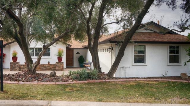 3215 E Oregon Avenue, Phoenix, AZ 85018 (MLS #5878824) :: Yost Realty Group at RE/MAX Casa Grande