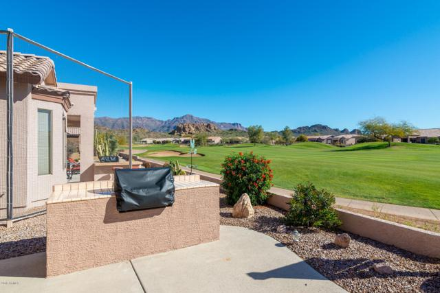 5505 S Red Yucca Lane, Gold Canyon, AZ 85118 (MLS #5879214) :: The Everest Team at My Home Group