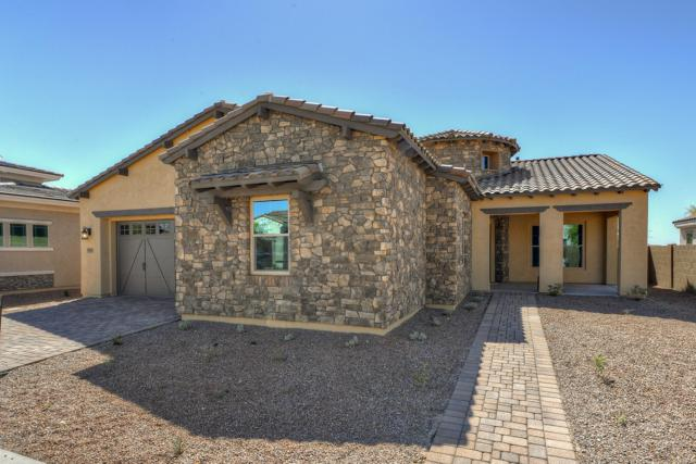 4681 N 206TH Avenue, Buckeye, AZ 85396 (MLS #5879327) :: Arizona 1 Real Estate Team