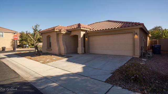 16145 N 170TH Avenue, Surprise, AZ 85388 (MLS #5879587) :: Riddle Realty