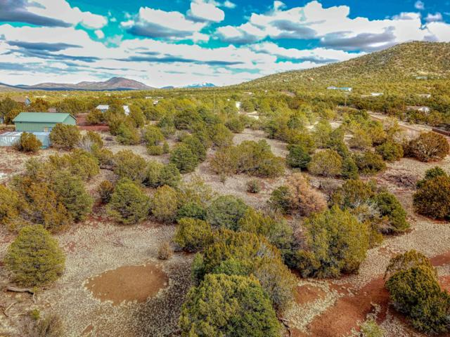 1511 W Wolf Lane, Williams, AZ 86046 (MLS #5880049) :: Lifestyle Partners Team