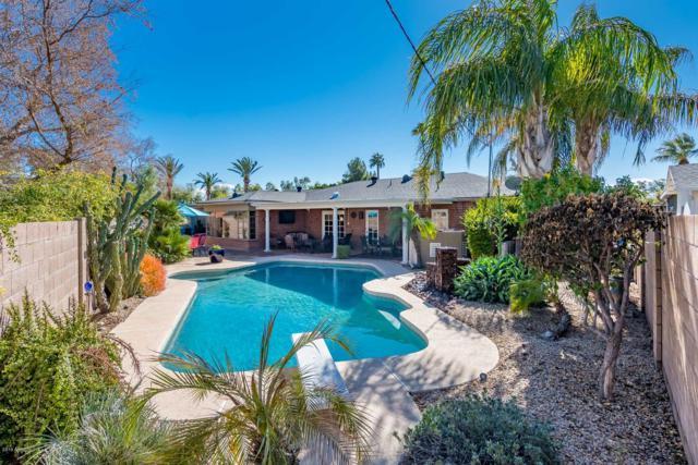 1518 W Flower Circle S, Phoenix, AZ 85015 (MLS #5880535) :: Yost Realty Group at RE/MAX Casa Grande