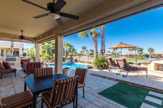22508 N Del Monte Court, Sun City West, AZ 85375 (MLS #5880630) :: Yost Realty Group at RE/MAX Casa Grande