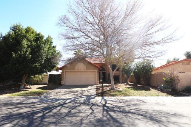 625 N Elm Street, Chandler, AZ 85226 (MLS #5880792) :: Yost Realty Group at RE/MAX Casa Grande