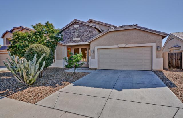 10759 W Overlin Drive, Avondale, AZ 85323 (MLS #5880845) :: Yost Realty Group at RE/MAX Casa Grande