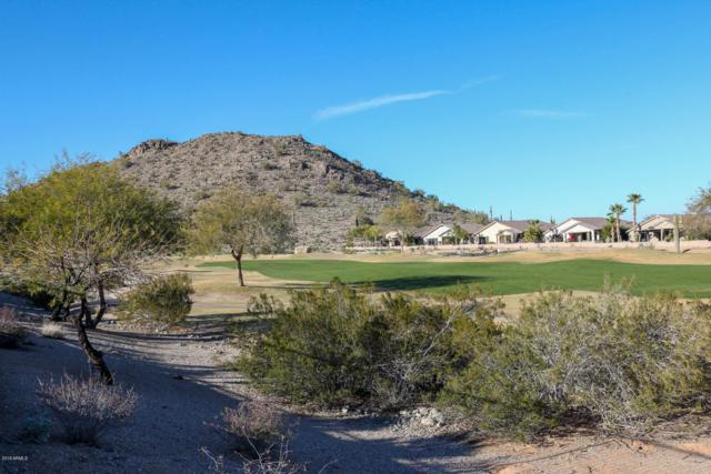 568 W Stirrup Lane, San Tan Valley, AZ 85143 (MLS #5881595) :: Yost Realty Group at RE/MAX Casa Grande