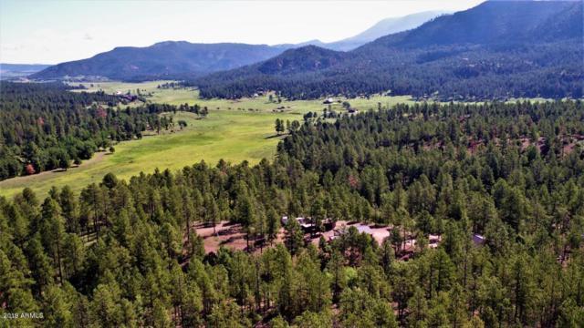 1 Acr 2269, Nutrioso, AZ 85932 (MLS #5882299) :: Revelation Real Estate