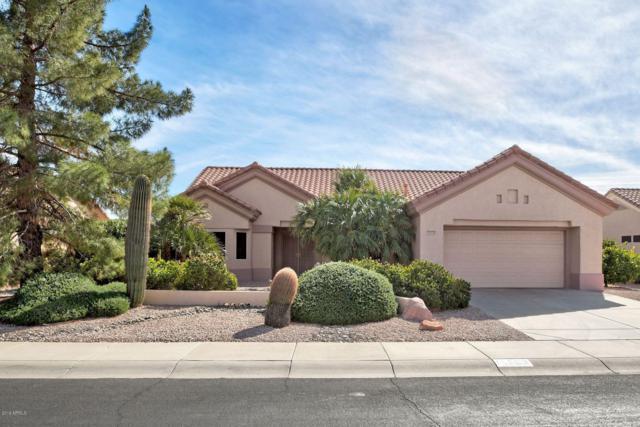14303 W Dusty Trail Boulevard, Sun City West, AZ 85375 (MLS #5882349) :: The W Group