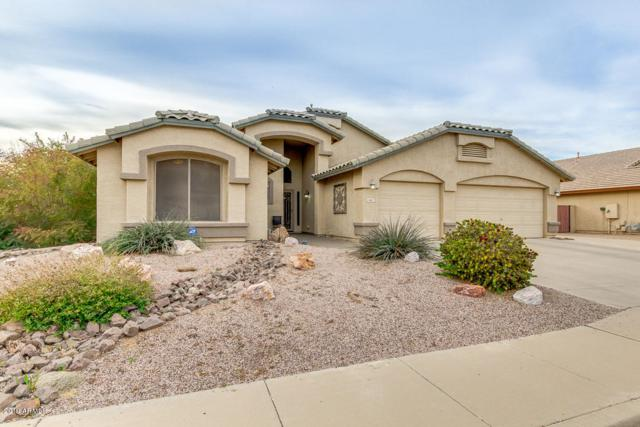 462 S Marie Drive, Chandler, AZ 85225 (MLS #5882355) :: The Property Partners at eXp Realty
