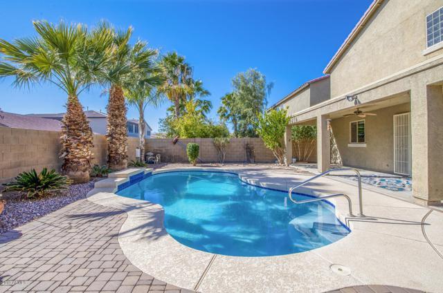 42523 W Avella Drive, Maricopa, AZ 85138 (MLS #5882365) :: Occasio Realty