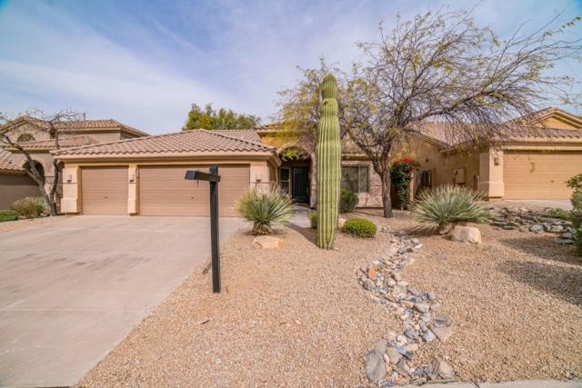 10572 E Meadowhill Drive, Scottsdale, AZ 85255 (MLS #5882745) :: The W Group