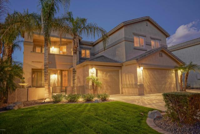 252 W Pelican Drive, Chandler, AZ 85286 (MLS #5882749) :: The Property Partners at eXp Realty