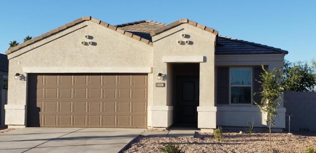 25650 W Desert Drive, Buckeye, AZ 85326 (MLS #5883130) :: The Results Group